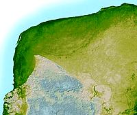 ゴンドイワナ大陸